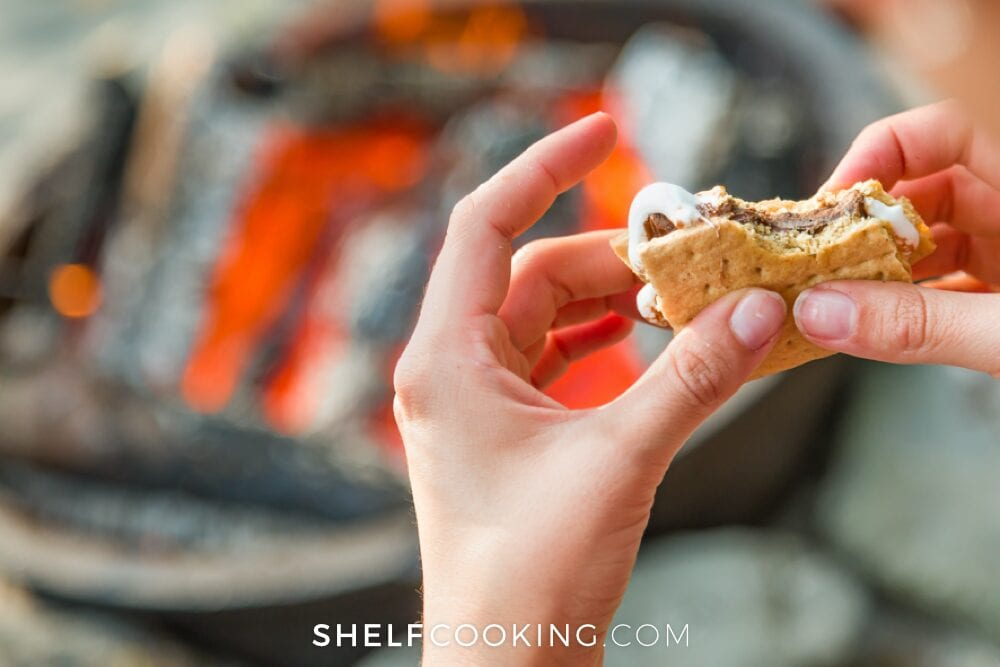 S'mores with a campfire, from Shelf Cooking