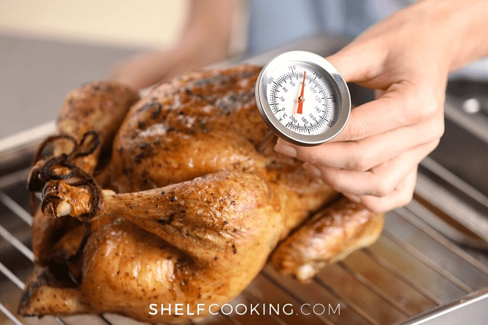 Meat thermometer in a turkey, from Shelf Cooking