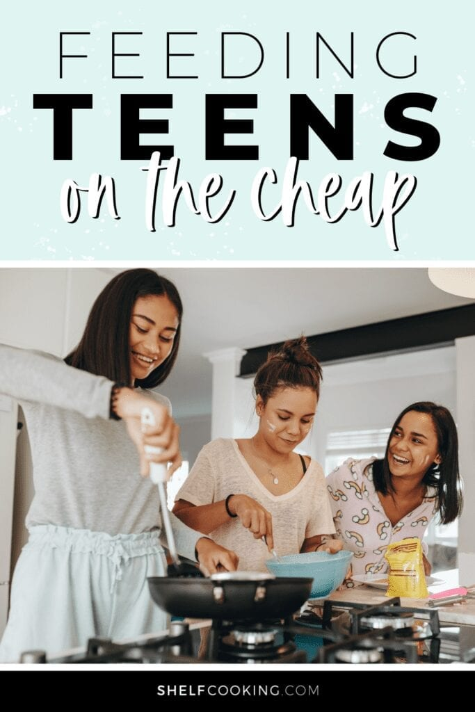 """Image with text that reads """"feeding teens on the cheap"""" from Shelf Cooking"""