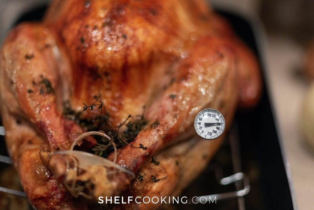 Turkey with a meat thermometer, from Shelf Cooking