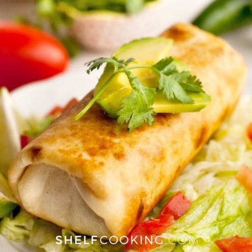 closeup picture of homemade chimichanga, from Shelf Cooking