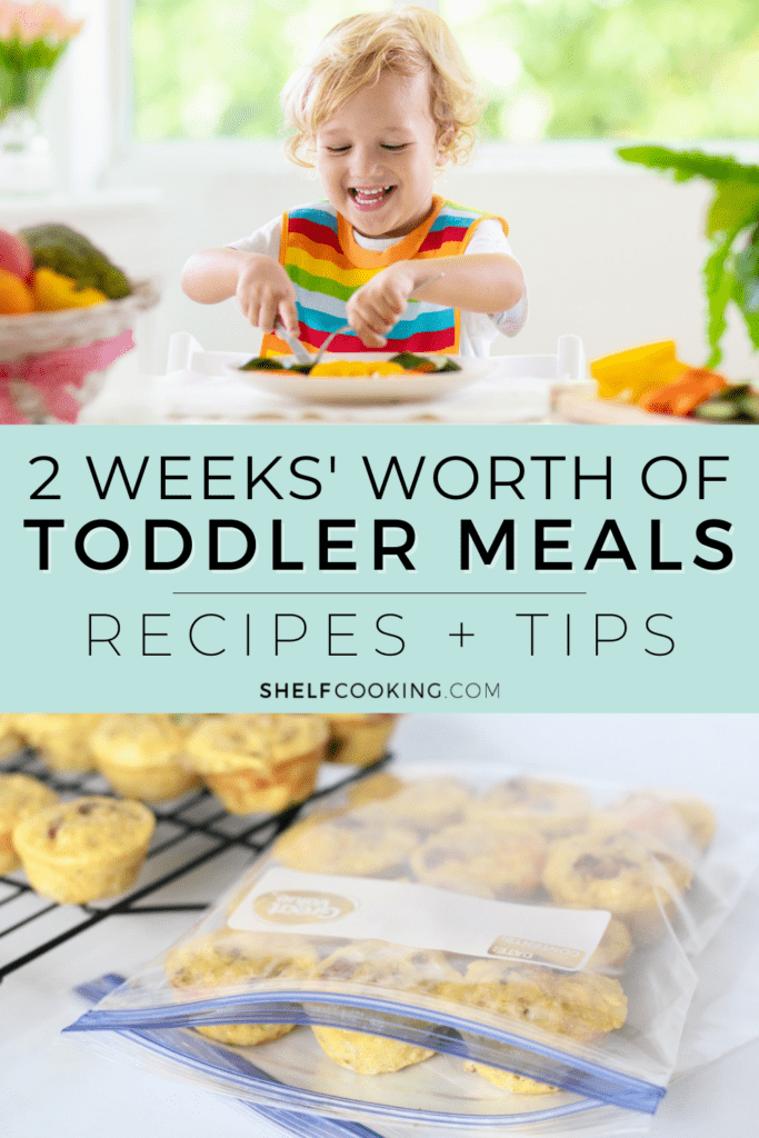 """Image with text that reads """"toddler meal ideas"""" from Shelf Cooking"""